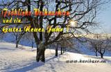 Frohe Festtage! / Season's Greetings