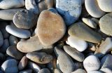 Steine am Strand / Stones at the beach (0846)