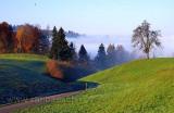 Nebel / Fog (9229)