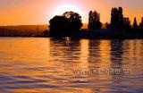 Sunset (5726)
