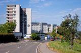 Gutsch (4886)