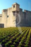 Forte de São Bruno (IIP)