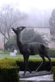 O Parque D. Carlos em 5 de fevereiro de 2011