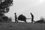 Peasants at work in Bran.jpg