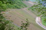 Steep vineyards to the south of Ernst.jpg