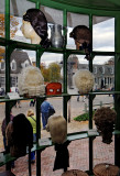 Colonial Williamsburg Wig Maker