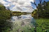 Lake Panic Kruger Nat. Park
