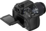 Sony-Alpha-DSLR-A500-rumors-2.jpg
