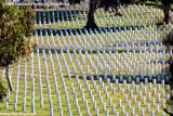 Head stones in the late afternoon at the Fort Rosecrans National Cemetery on Point Loma stock photo #4763