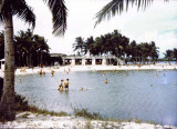 1954 - Matheson Hammock and the beach pavilion