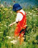 Seehausen  1978.jpg