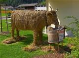 STRAW COW