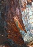 SPLIT WOOD COLOURS