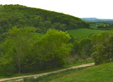 VIEW ACROSS TO THE DEVIL'S DYKE HILL