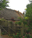 ROOF THATCHING . 1