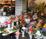 FLOWER MARKET DISPLAY