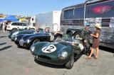 1954 Jaguar D-Type, foreground, and 1952 Jaguar C-Type