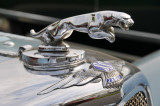 Late-1930s SS-100 Jaguar roadster hood ornament