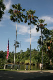 Sepilok and Rainforest Discovery Centre, Sandakan, Sabah