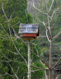 Big Creek Birdhouse