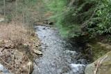 Up The Big Creek