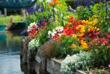 Hortillonnage