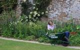 The Flower Gardener