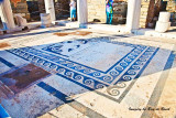 House of Dionysus floor mosaic