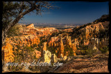Fairyland Canyon, Bryce NP