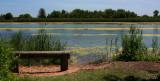 Gateway NRA, Jamaica Bay NWR, NY, East Pond