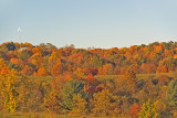 Peak Color in the Southern Highlands of West Virginia