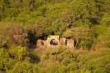 n6567 Leinster Estate Ruins