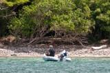 n6714 Snorkeling