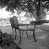 bench with beautiful bokeh