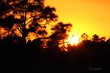 sundown at Babcock