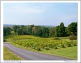 Six-Mile Creek Winery