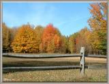 Autumn Corral