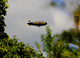 yes even the Blimp made it over the yard  going to aTrump Golf Tournment !?!