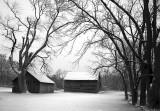 Black and White Winter Farms Illinois