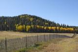 (7327) Fence Line