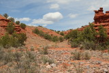 Weathered Red Rocks (7258)