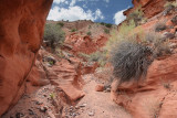 Dry Canyon (7262)