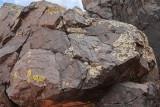 Lichen-Covered Basalt (7275)