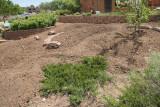 Herb Garden Landscaping (8822)