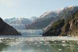 South Sawyer Glacier (6682)