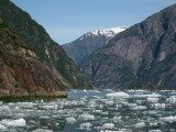 Tracy Arm Inlet (0311L)