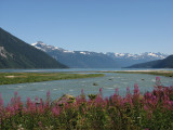Chilkoot River (0723L)