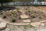 Oasis Garden -- Area Z40 (7387)