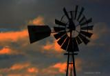 Amber Skies Windmill