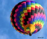 Color Swirls.jpg